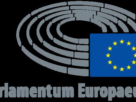 Teilnahme an Euroscola digital 2021