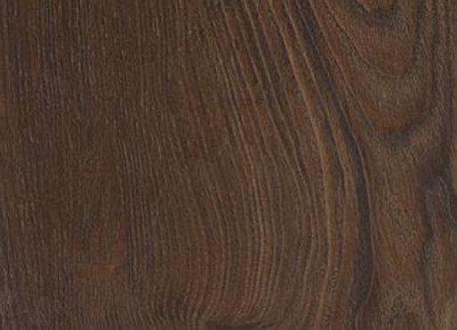 Distinctive: Scarlet Oak