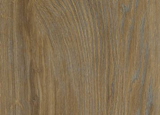 Distinctive: Water Oak