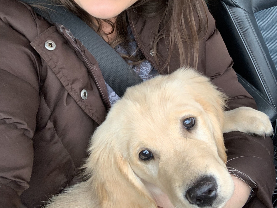 Bringing Watson's Maverick home at 3 months old.