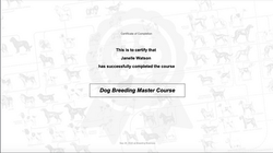 Janelle's Dog Breeding Master Course Certificate