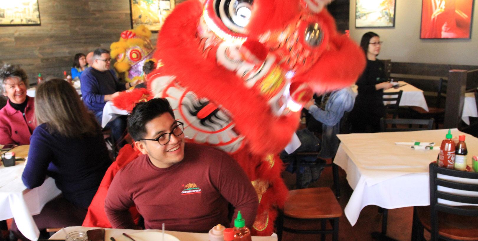 Dragon Playing
