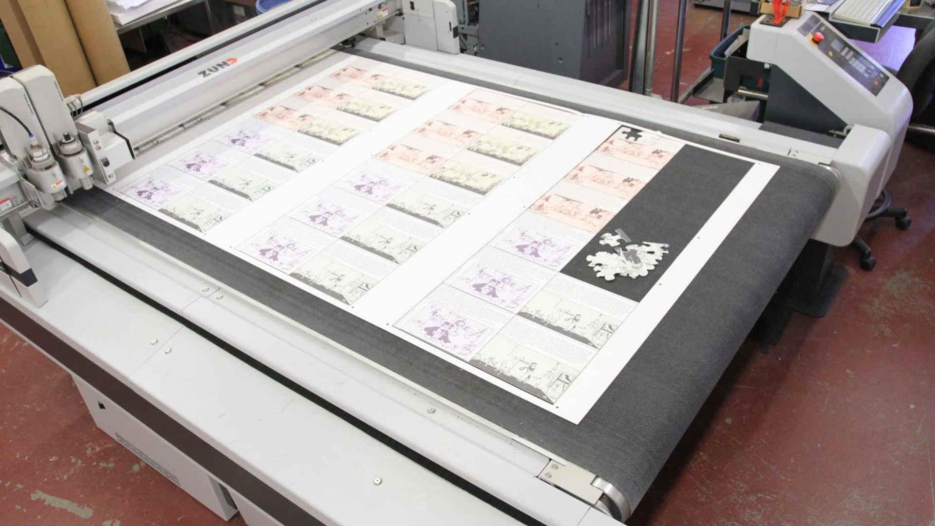 Larger Format Printer.JPG