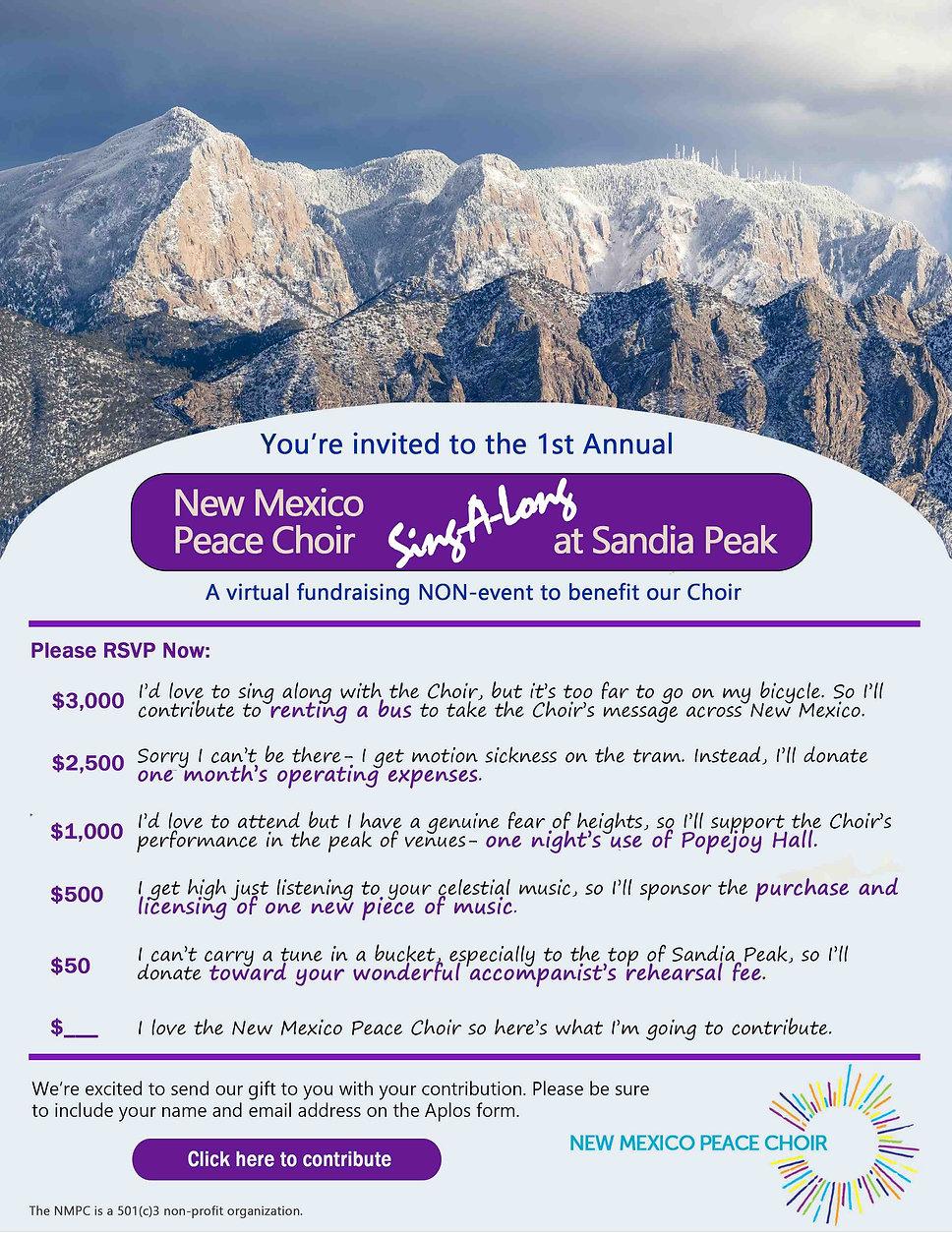 Website 2020 Fundraiser-V3-purple(ALL).j