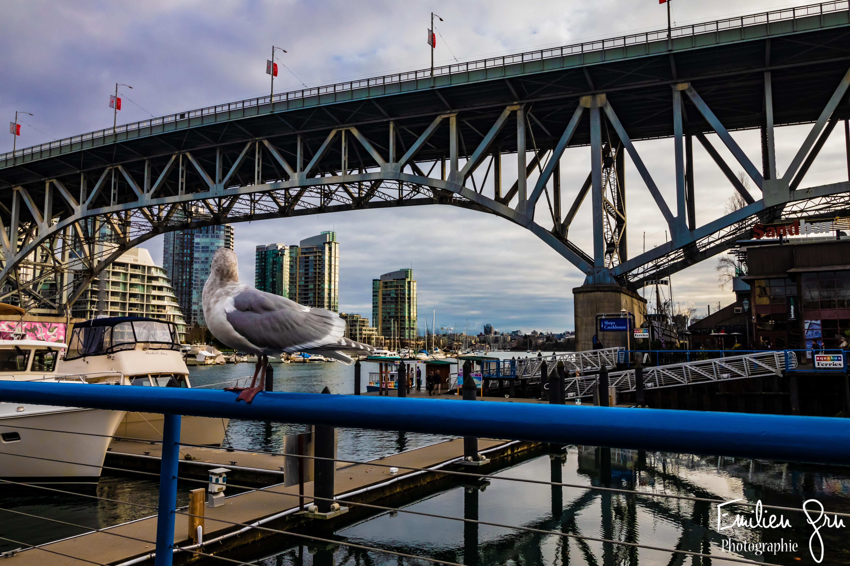 Vancouver - Emilien Grn Photographie