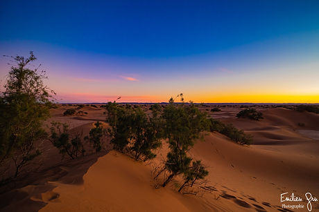 Coucher de soleil - Sahara.jpg