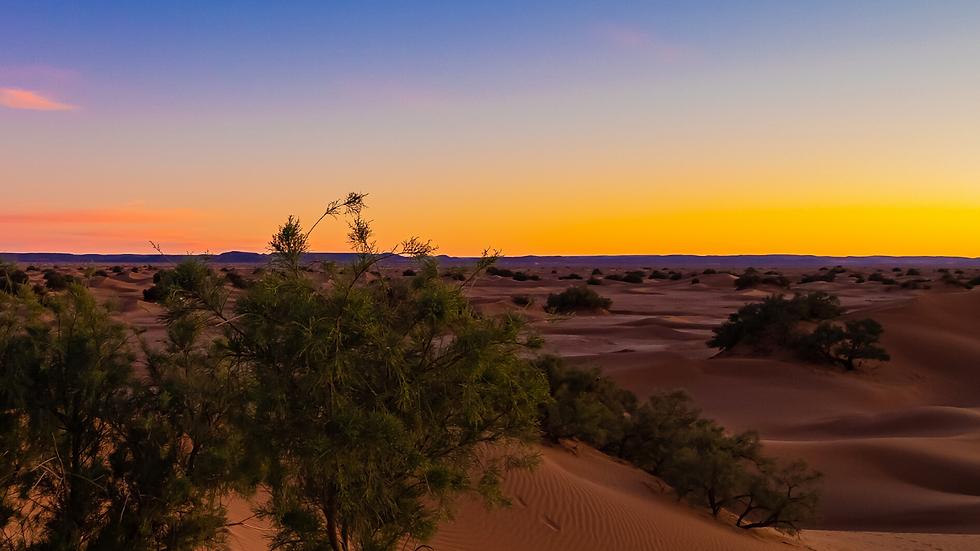 Le Magazine du Baroudeur - Préparer son trekking dans le Sahara