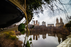 Central Parc - Emilien Grn Photographie