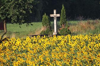 Catholic countryside cross and flowers Switzerland