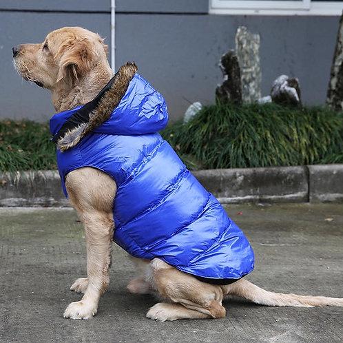 Winter coat - Big dogs (Blue)