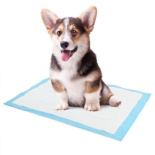 Dogs puppy pads
