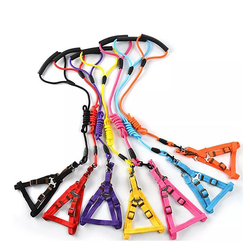 Harness - Colorful