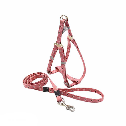Colorful Harness