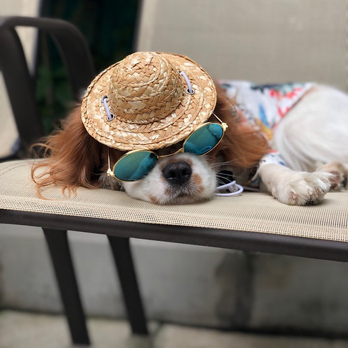 Hat and sunglasses