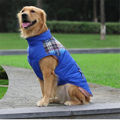 Winter coat - Big dogs