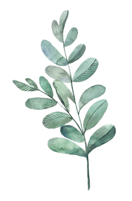 watercolor_leaf1.png