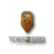 toes2box challenge logo.png