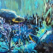 Voss Blandings Turtles