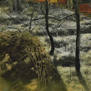 Brown: Train Hunting