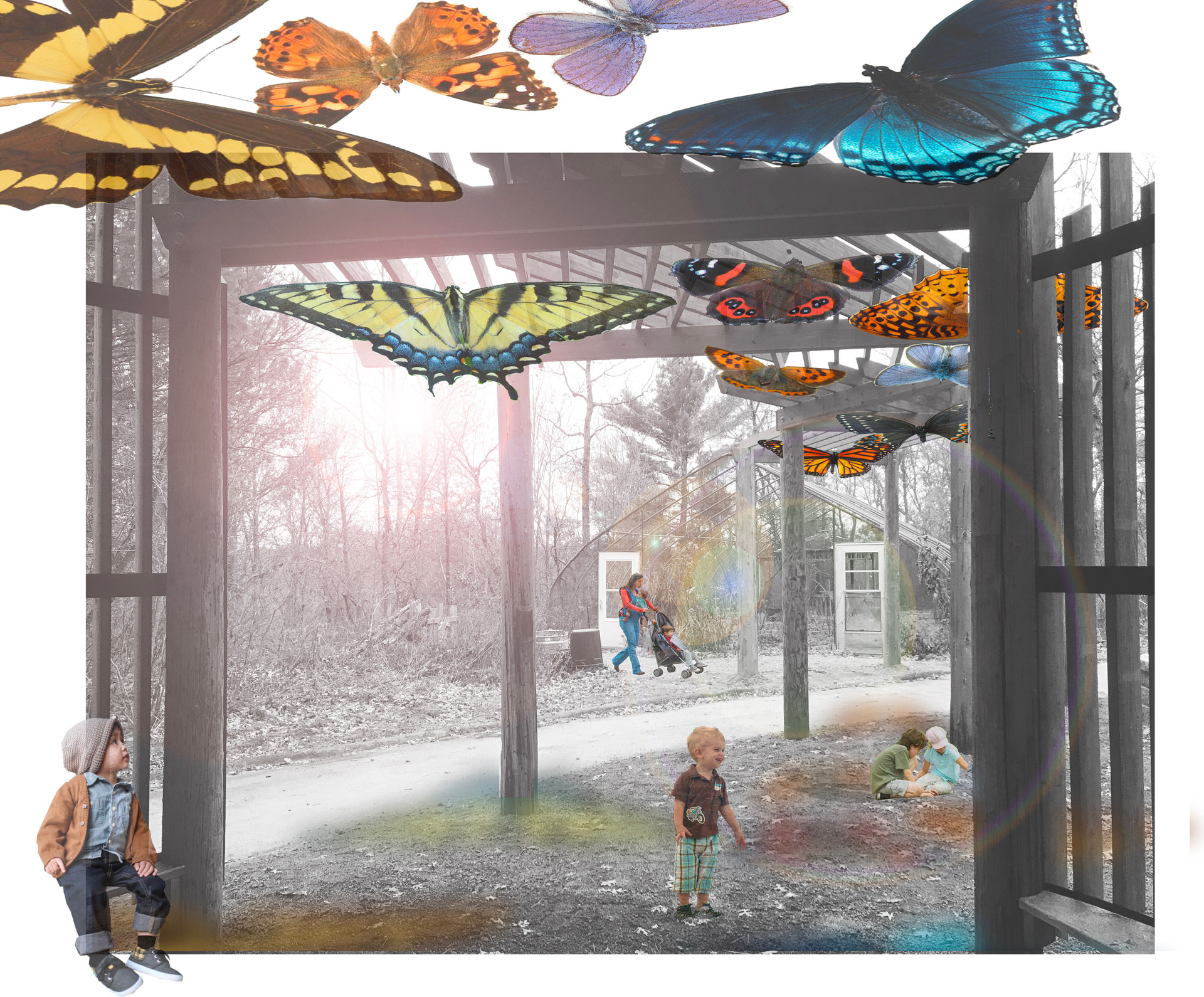 Butterfly Pavilion drawing