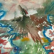 Woodpecker Flies between Two Spruce