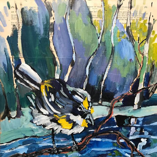 Walt Whitman Bicentennial: Yellow Rumped Warbler, River thaw