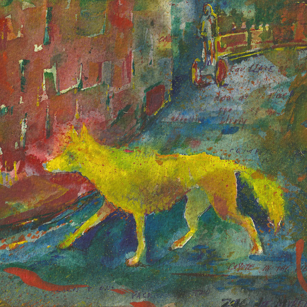 Coyote in the Digital Landscape