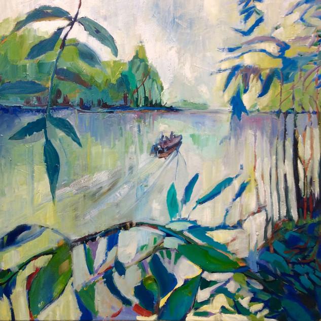 Lake Wissota Dream