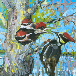 "SOLD ""Pileated Woodpecker says- Don't Drain the Swamp!"""