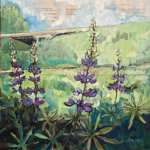 Lupine Patch at 53 and 312 (Walt Whitman Bicenennial Series)