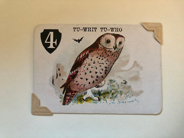 Owl Victorian Greetings Card