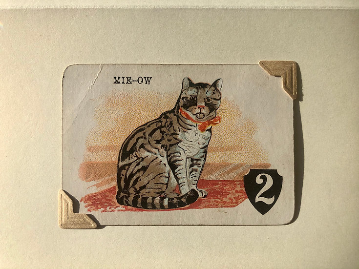 Tabby Cat Victorian Greetings Card