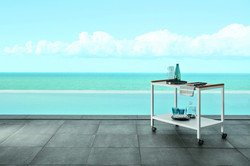 #accessoricollection_cart (2) _web