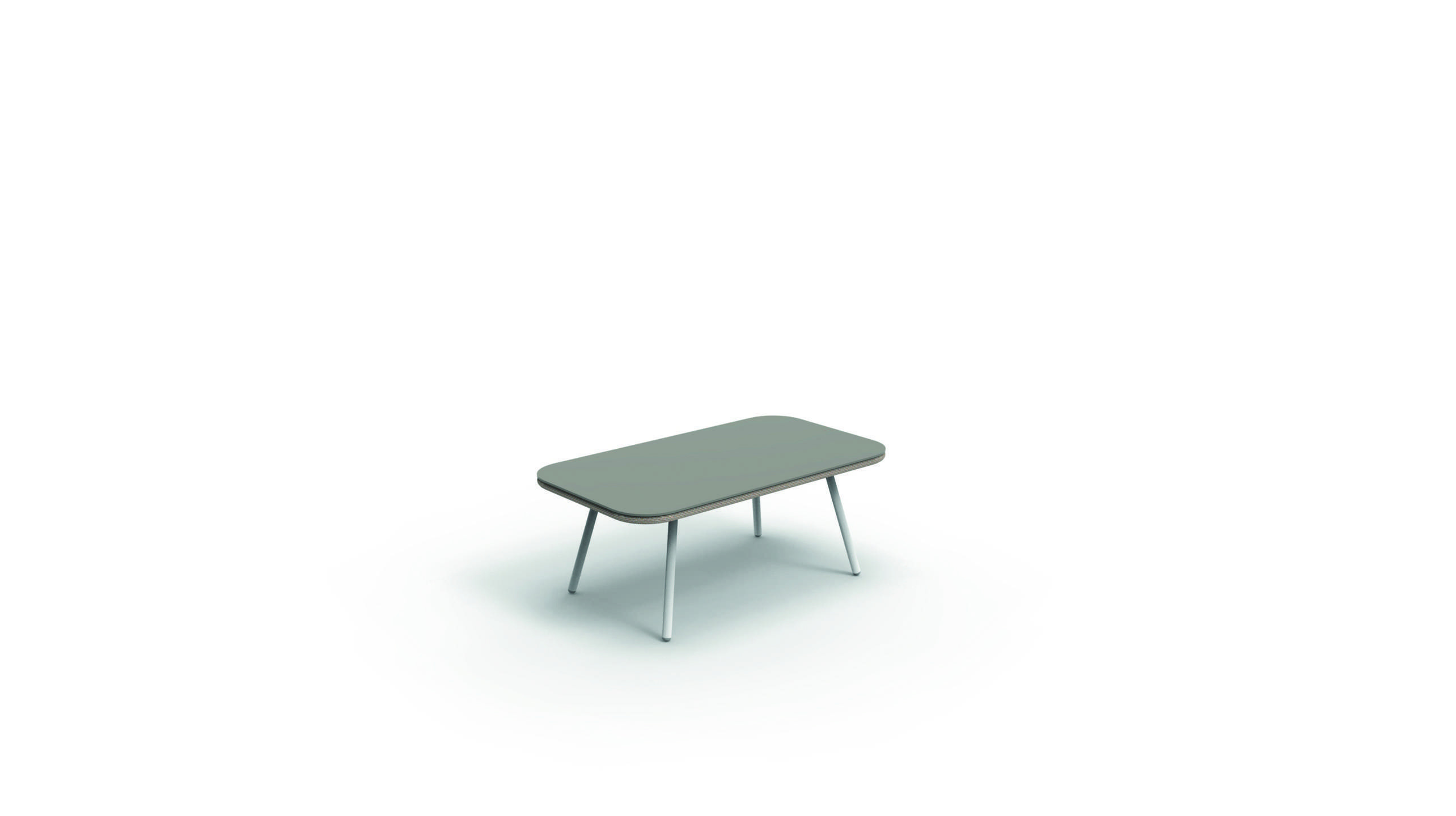 Amy_coffee table _web