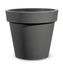 easy vaso