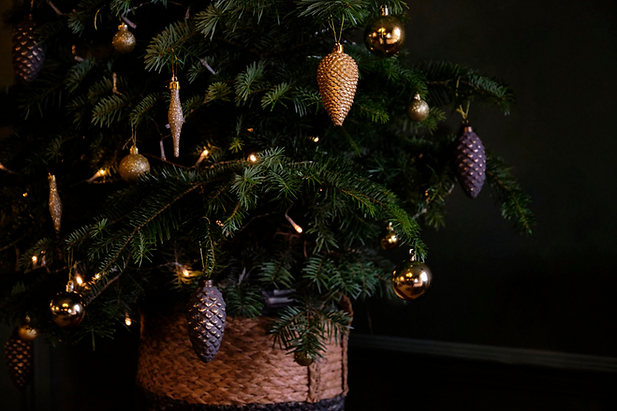 Christmas Tree at The Black Lion.png