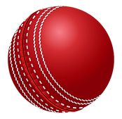 Cricket%20Stock%20Photo_edited.png