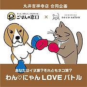 ねこサロンわんにゃんLOVEバトル-01.jpg