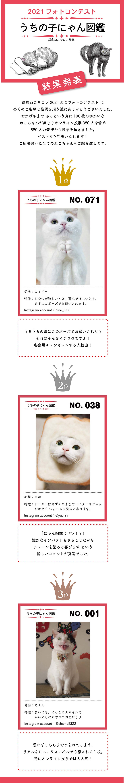 2103ねこフォト結果発表_event.jpg