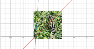 speed distance time caterpillar desmos graph