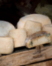 Group of Natural mountain cheeses made i
