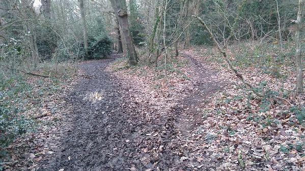 footpath deviation due to mud, Jan 2018