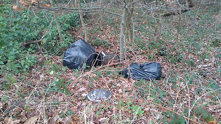 fly tipping Welling Way 4 Jan 2018.JPG