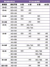 ABO遺伝.jpg