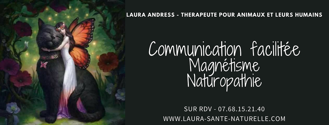 LAURA ANDRESS - THERAPEUTE POUR ANIMAUX