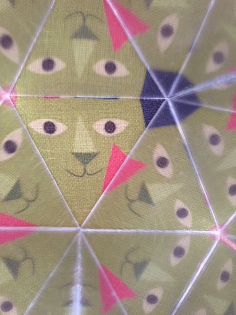 Cats eyes by Ben