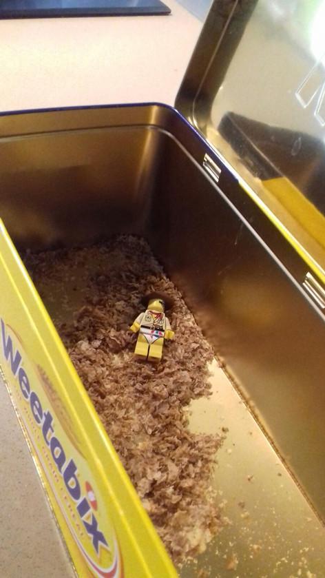 lego man eating the weetabix