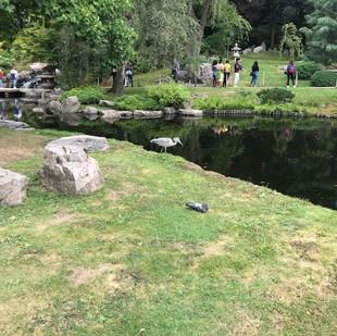 Holland Park Japanese Garden