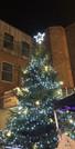 ANNA FLASHBACK FRIDAY CHRISTMAS TREE.jpg