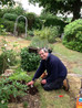 MIKE - DAD BUSY IN THE GARDEN.JPG